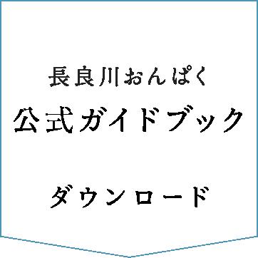 2017公式ガイドブックダウンロード